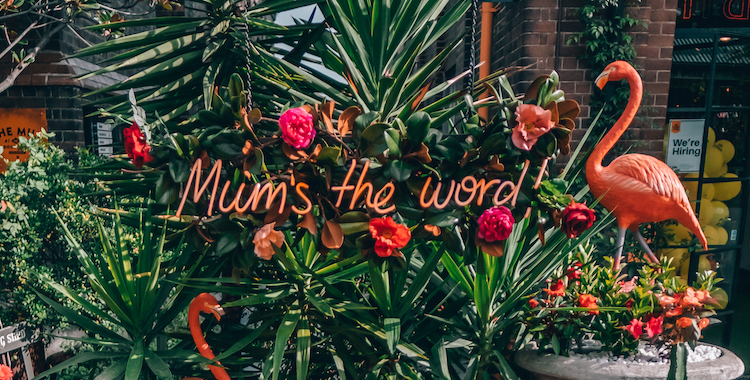 The Grounds Mum's The Word