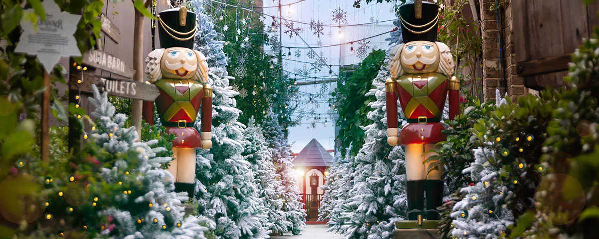 Christmas At The Grounds Of Alexandria What S On