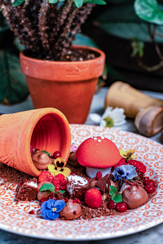 The Potting Shed: Chocolate Garden Dessert