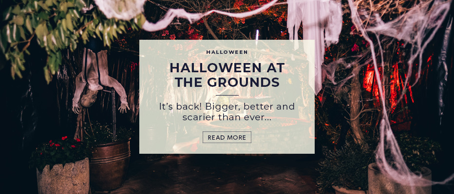 Halloween at The Grounds